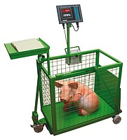 Электронные платформенные весы ВПА Малыш